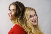 Two Girls Creating Hairdo. Hair Ombre Color poster