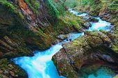 Scenic Nature Landscape Of Famous Vintgar Gorge (bled Gorge) Carved By Radovna River. Famous Tourist poster