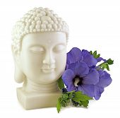 Buddha And Blue Hibiscus - Buddha Statue Head And Blue Hibiscus Flower Isolated On White Background poster