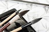 Closeup Writing Brush poster