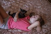 Child Girl Plays With Little Dog Black Hairy Chihuahua Doggy. Girl In Pink T-shirt And Chihuahua At  poster