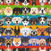 Illustration Seamless Pattern Colorful Dogs poster