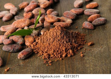 Cocoa beans and cocoa powder on wooden background