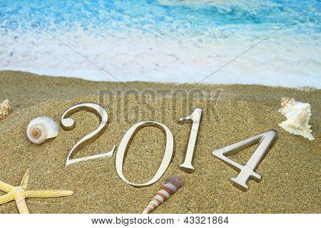2014 Año nuevo en la playa