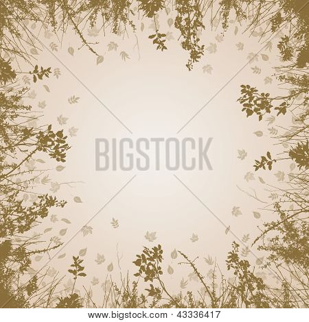 Brown Branches And Background