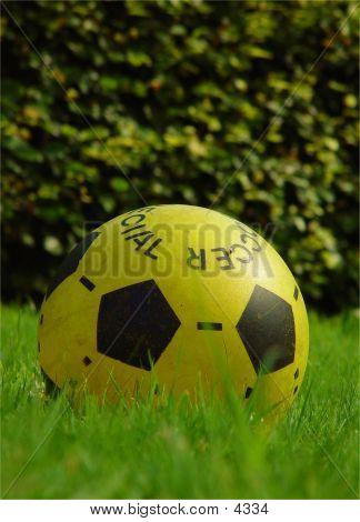 Yellow Garden Football