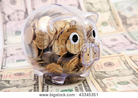 Savings In Piggy Bank Isolated On Dollars Banknote Background