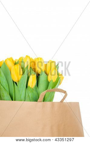 Tulips in the paper bag