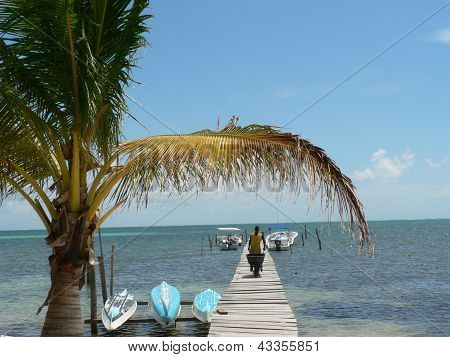 Tropical beach with wooden jetty and palm on the island of Caye Caulker, Belize