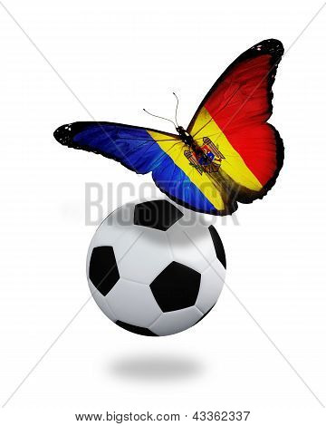 Concept - Butterfly With Moldova Flag Flying Near The Ball, Like Football Team Playing