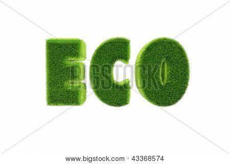 Ecological grass text