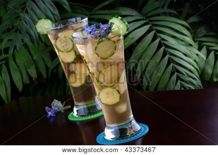 Ginger Cucumber Iced Tea