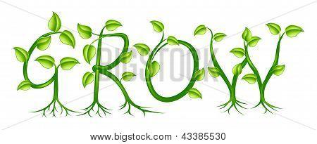 Grow Concept