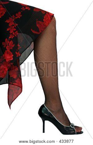 Elegant Leg