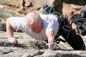 Elder Climber