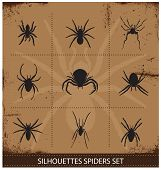 pic of black widow spider  - nature spiders silhouettes symbols vector black collection - JPG