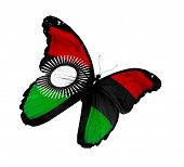 Malawi Flag Butterfly Flying, Isolated On White Background