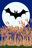 picture of vampire bat  - A vampire bat swooping over a field at night against a full moon - JPG