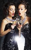 pic of banquette  - Couple of cheerful women toasting at party with wine glasses  - JPG