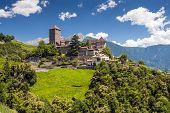 picture of south tyrol  - Tirol castle on a sunny summer day with blue sky white clouds green meadows and trees - JPG