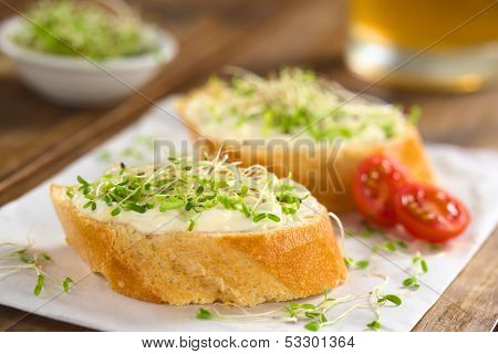 Bread with Cream Cheese and Sprouts
