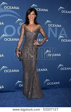 LOS ANGELES - OCT 30:  Perrey Reeves at the Oceana's Partners Awards Gala 2013 at Beverly Wilshire Hotel on October 30, 2013 in Beverly Hills, CA