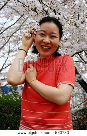 Primavera en Corea