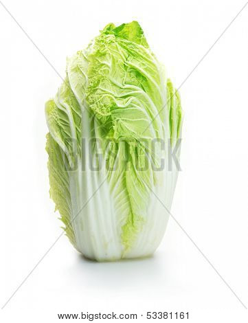 Chinese cabbage isolated on white.