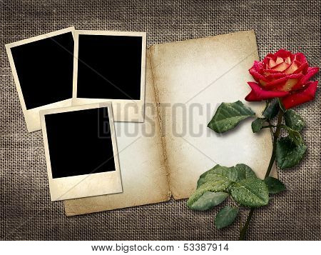 Polaroid-style Photo On A Linen Background With Red Rose