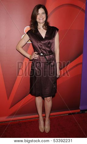 LOS ANGELES - AUG 27:  Betsy Brandt arrives to NBC All Star Summer TCA Party 2013  on July 27, 2013 in Beverly Hills, CA
