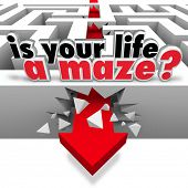 The words Is Your Life a Maze asking you the question of whether you need help or direction to find