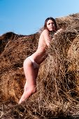 image of brest  - Pretty topless woman on hay stack covering brests - JPG