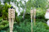 stock photo of tiki  - Decoration tiki oil torches for lighting or insect repellent - JPG