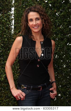 LOS ANGELES - APR 13:  Melina Kanakaredes at the John Varvatos 11th Annual Stuart House Benefit at  John Varvatos Boutique on April 13, 2014 in West Hollywood, CA