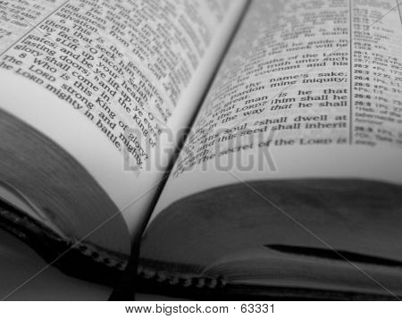 Black And White Bible