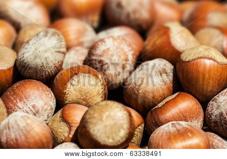 Hazelnuts Background Macro. Heap Of Hazel Nuts Background Close Up.