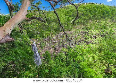 Moran's Falls Lookout In Lamington National Park, Queensland, Australia