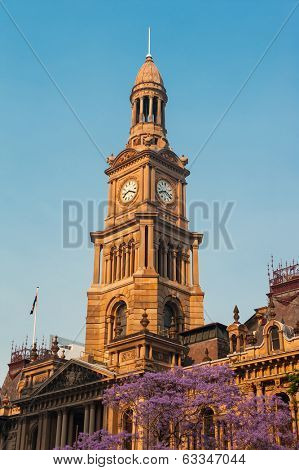 Sydney city hall with blooming jacaranda tree in front of it, Australia