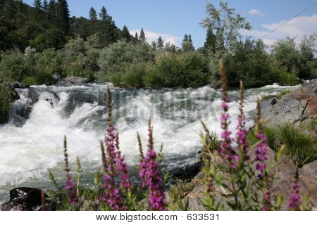 Rogue River Oregon