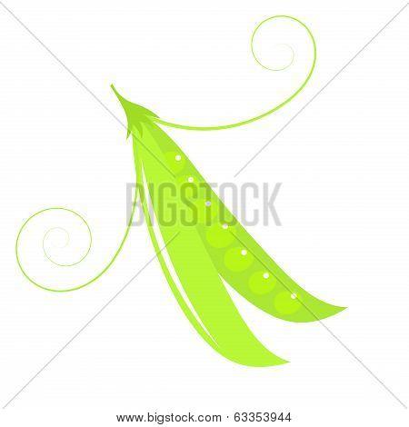 Green Peas Pod