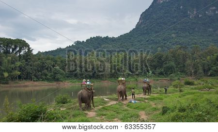 LUANG PRABANG, LAOS - CIRCA November 2013: Tourists Riding the Elephants in Laos