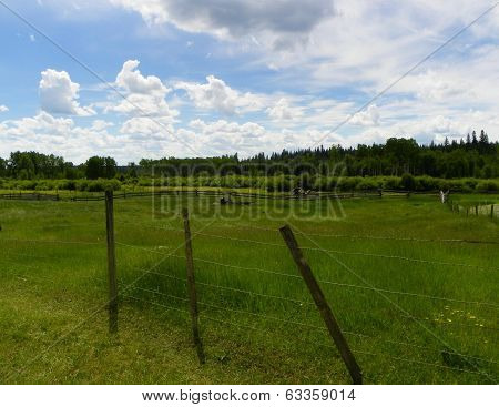 Wire fence and farm scenic