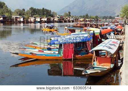 KASHMIR, INDIA - AUG 3 Shikara boats on Dal Lake with houseboats in Srinagar