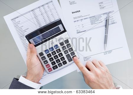 Businessperson Analyzing Financial Data