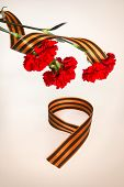 image of carnations  - Red carnations and figure 9 from George tape