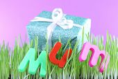 Gift box for mum on grass on color background