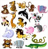 picture of grampus  - Set of beautiful vector cartoon animals on the white background - JPG