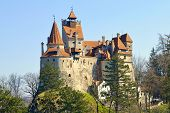 stock photo of early spring  - Bran Castle - JPG