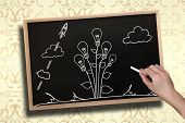 Composite image of hand drawing light bulb plant with chalk on chalkboard with wooden frame