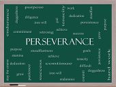 stock photo of perseverance  - Perseverance Word Cloud Concept on a Blackboard with great terms such as endurance doggedness purpose and more - JPG